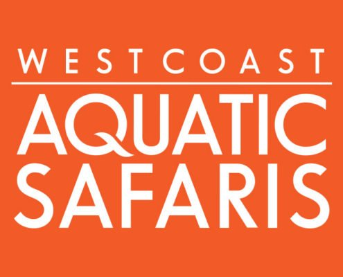 Tofino Graphic Design - West Coast Aquatic Safaris